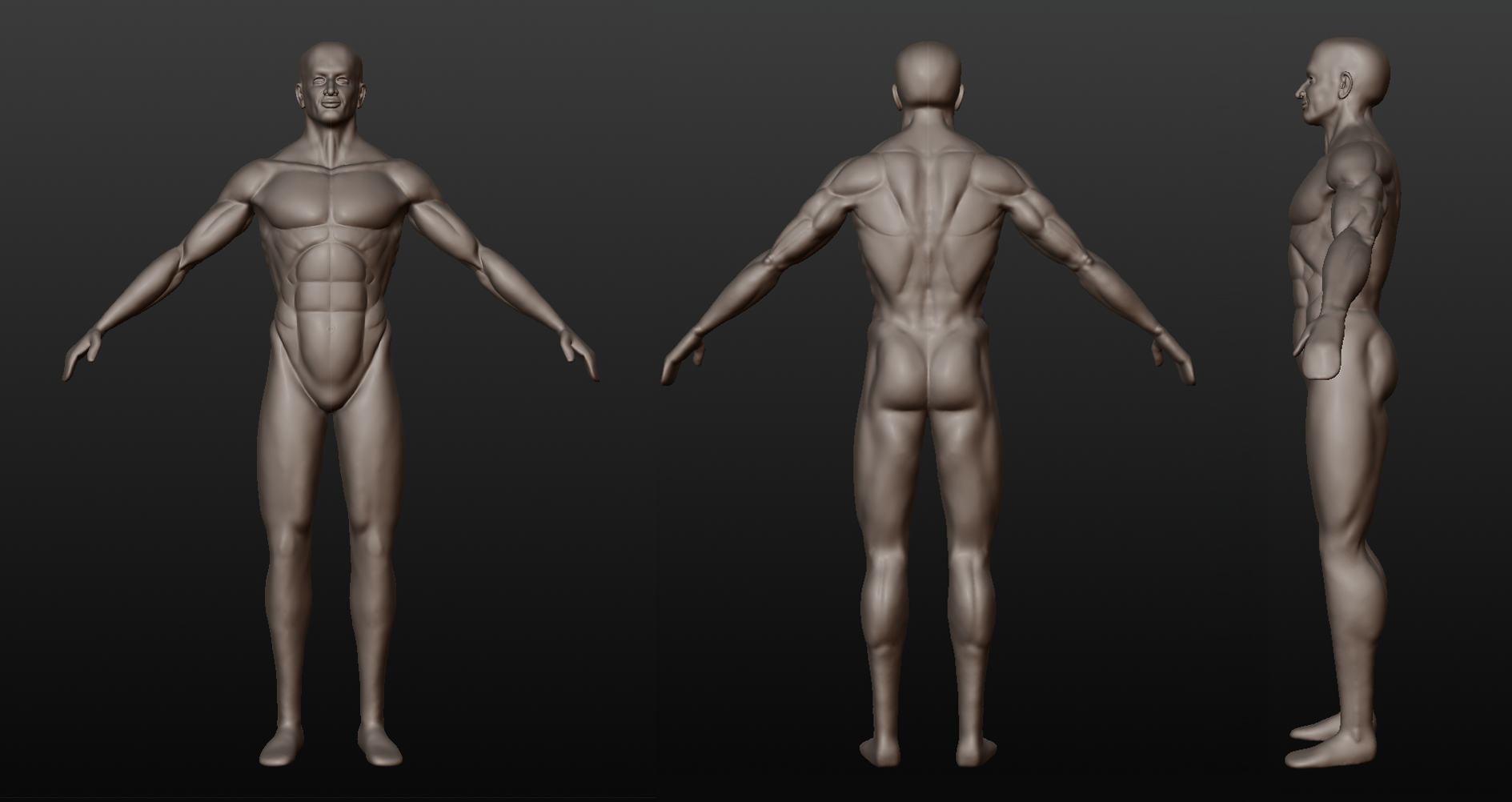 Male Anatomy Sculpt | folioHilton.com/blog